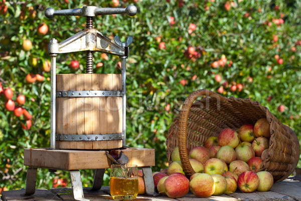 Cider Press Saturday